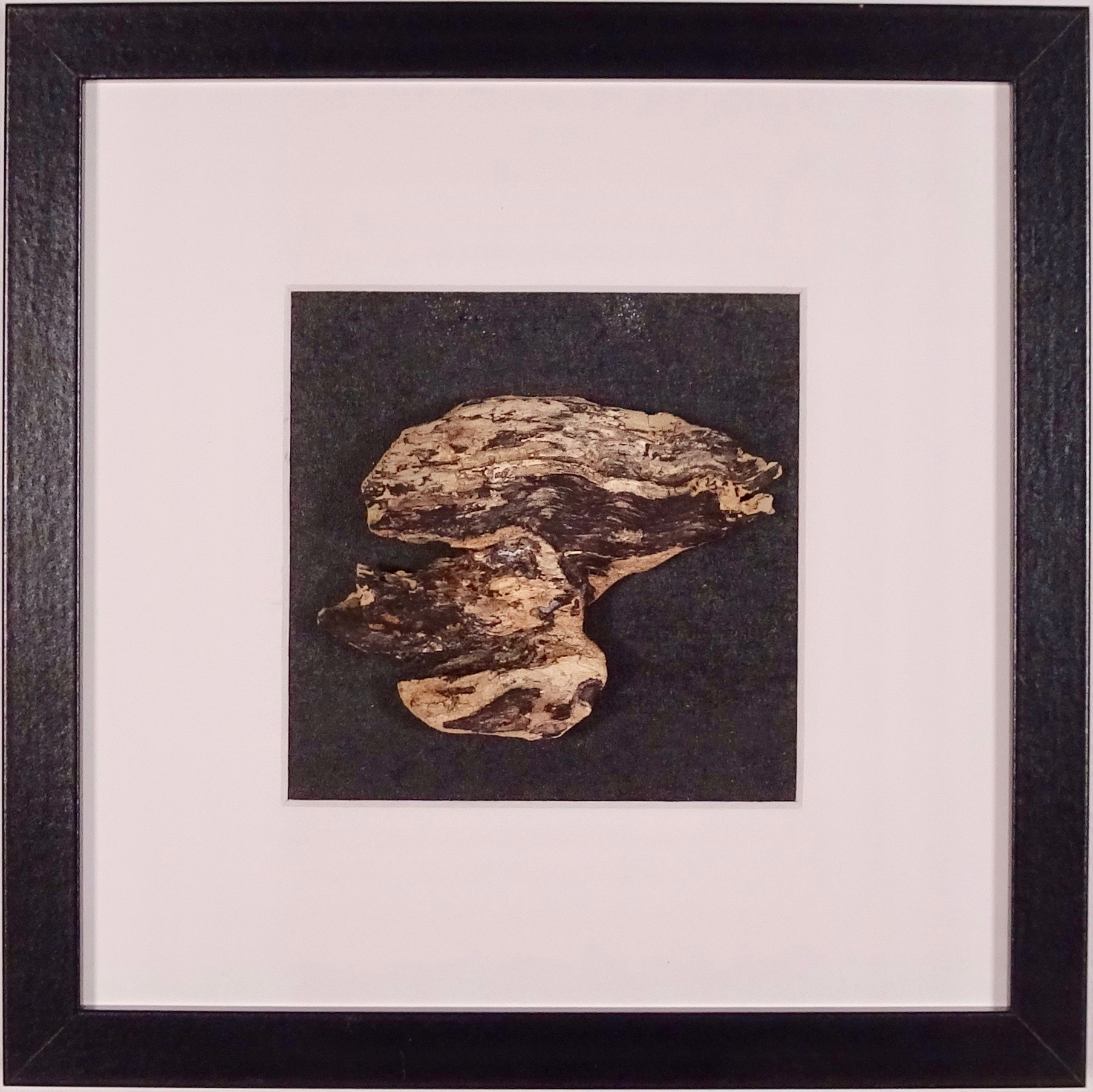 NAUFRAGIO #1 - Beached wood, acrylic, sea water on cardboard, 25x25cmm with passe-partout frame - AVAILABLE