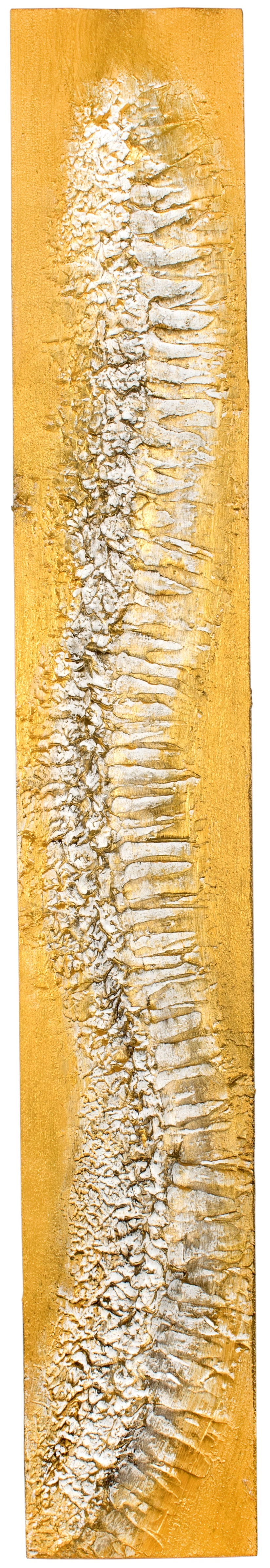 VERTEBRAE#6 -Plaster and acrylic on rough spruce board, 18x120cm - UNAVAILABLE