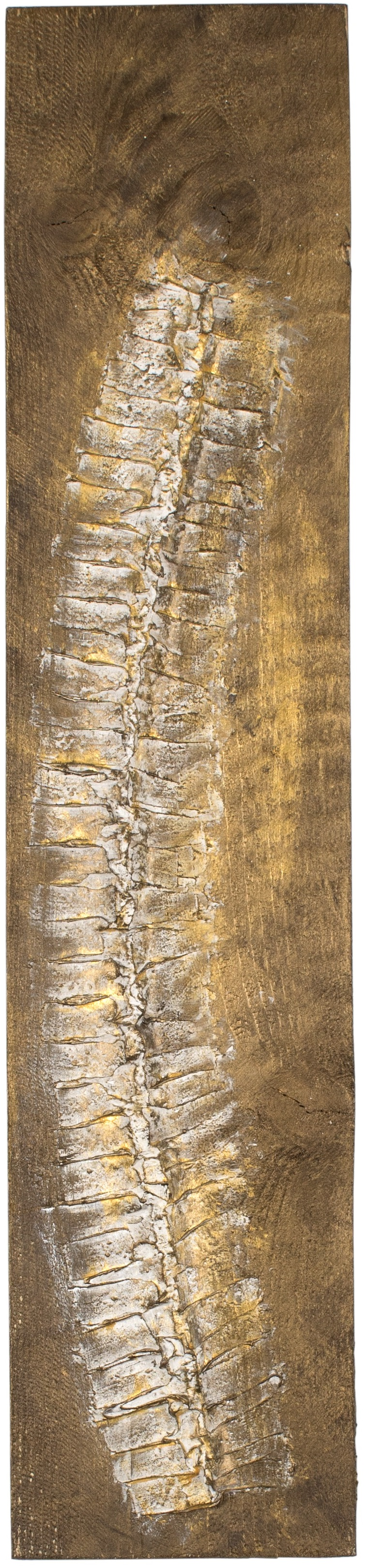 VERTEBRAE#7 -Plaster and acrylic on rough spruce board, 17x80cm - AVAILABLE